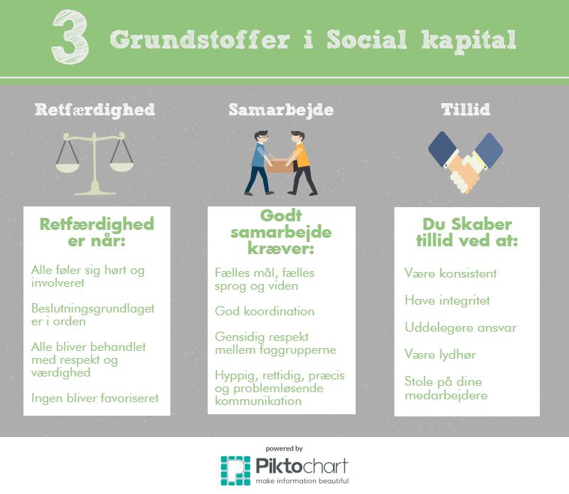 social kapital teori